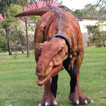 Regina The T Rex