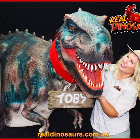 Toby The T Rex